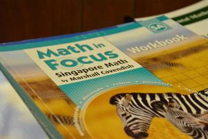 Lesson Plan using Singapore Math